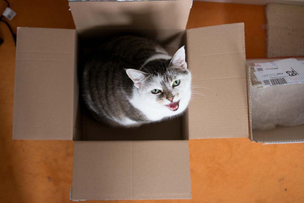 TIFF in a box